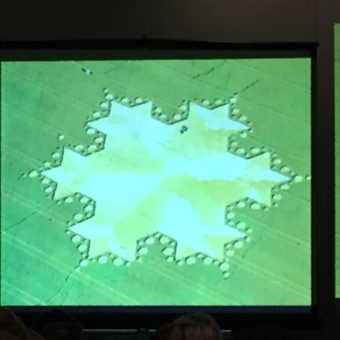 Slide portraying a fractal looking crop circle.